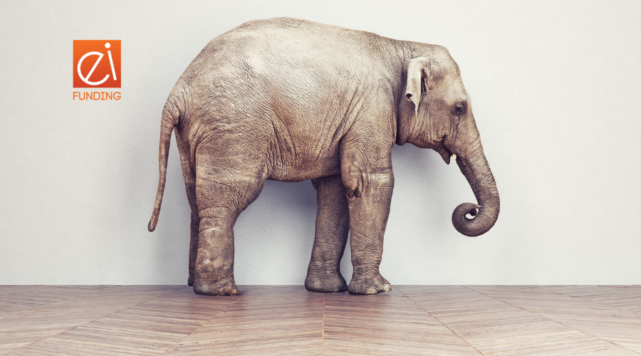 EI Elephant